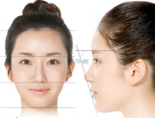 Dáng mũi như thế nào được đánh giá là đẹp hoàn hảo? 3